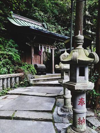 Japan 銭洗弁天 神社 鎌倉