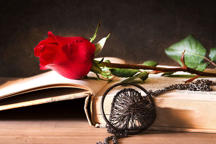 Still life with Red rose on the open book and heart in the dark,Valentines Day ,love Still Life Table Close-up Flower Red Book Love Heart Shape Rose - Flower Nastalgia Valentine's Day  Memories