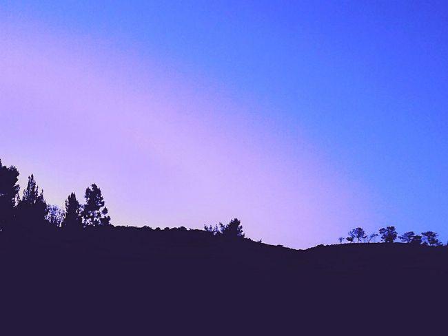 Hillside View Hillside Sunset Hillside Slide Hillside Sillouette Sunset Silouette & Sky Sillouettes And Sunsets Landscape_Collection Landscape_photography Landscape Collection Landscape Landscape Photography The Hills The Hillside Thehillside Sky And Trees Skytrees Hollywoodhills Hollywood Hills Naturescape Dark And Light Darkandlight Fading Summer Fading Sundown Landscape