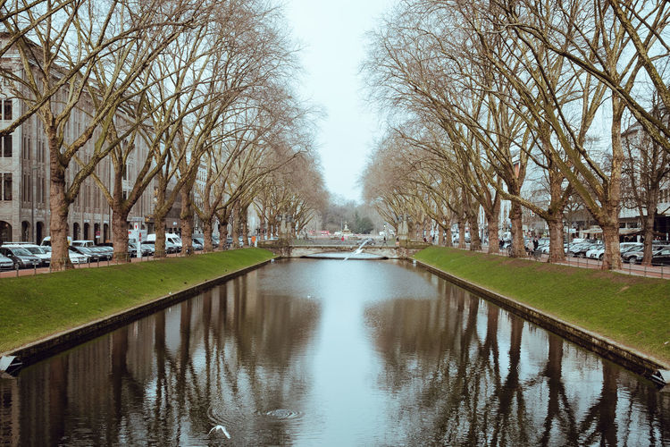 Canal amidst bare trees in park against sky