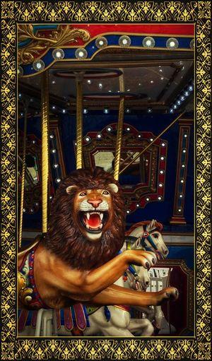 Once bitten, twice shy Lion Carosel Maryland National Harbor Roar EyeEm Gallery