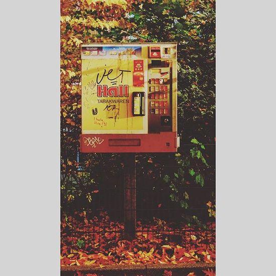 Cigarettes vending machine . . . •••••••••••••••••••••••••••••••••••••••••••••• Fall Autumn Leaves Germany Falltime Season  Seasons Instafall Instagood Tflers Instaautumn Photooftheday Leaf Foliage Colorful Orange Red Autumnweather Fallweather Nature