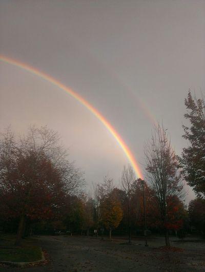 Rainbows Sky Clouds part 4 by Shaun Emerik ©