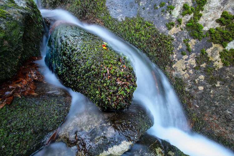 Water Waterfall Tree Motion Planet Earth Long Exposure High Angle View Rapid Flowing Water