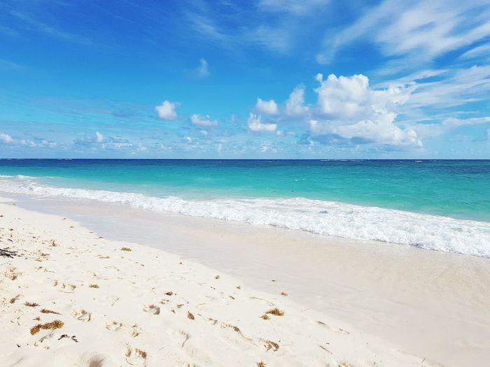 Water Wave Sea Tree Beach Blue Coconut Full Length Sand Beauty