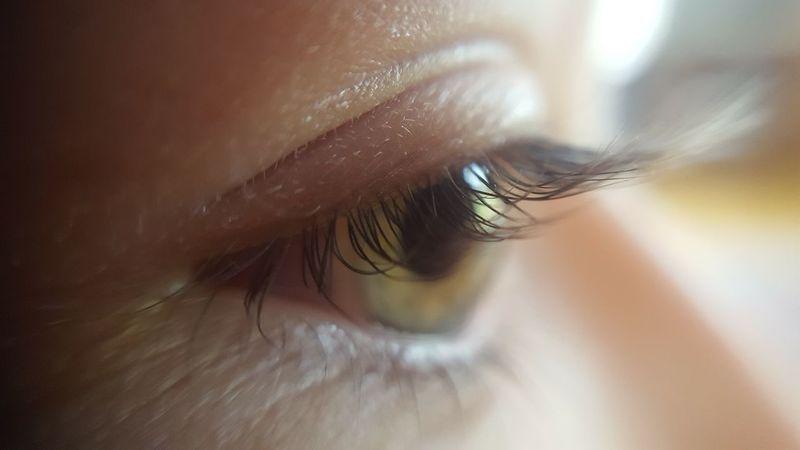 Close Up Close-up Day Eyeball Eyelash Eyelid Eyesight Human Body Part Human Eye Human Eyes Indoors  Iris - Eye Macro Macro Photography One Person People Real People Sensory Perception