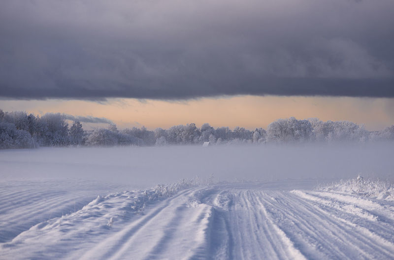 Country road on a snowy foggy winter morning