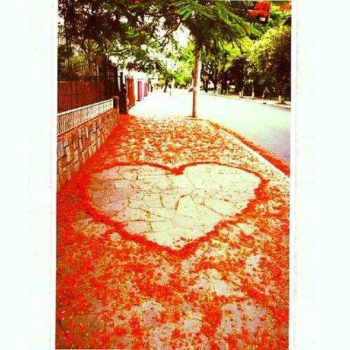 Viva o amor Inlove Instamoments Instalife Goodmoments life love valentinysday