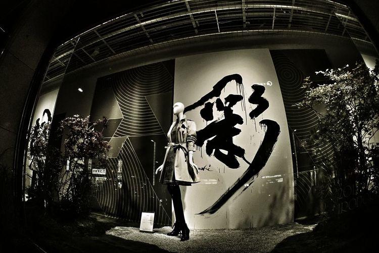 彩 書 書道 Woman Fashion Autumn🍁🍁🍁 Window Display Night Photography Night Lights Night Street Taking Photos From My Point Of View Walking Around Tokyo Street Photography Urban Lifestyle Perspective Reflection Fish-eye Lens Kanji Fish Eye Takumar 17mm/F4 日本橋三越 Tokyo,Japan 今年もアートアクアリウム観に行くついでに三越のショーウィンドウ撮ってみた。