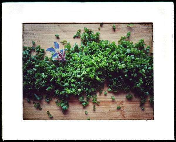Kitchen Herbs Chives Borago Wood - Material Plant Nature No People Day Cooking Salad Green Color Green Slices Blossomborago Borago Blossom Scenics Lifestyles Kitchen Life Huaweiphotography Huawei HuaweiP9 Framed