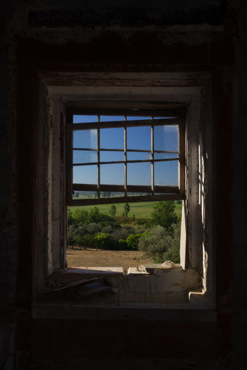 Abandoned Architecture Built Structure Clear Sky Close-up Day Indoors  No People Sky Tree Window