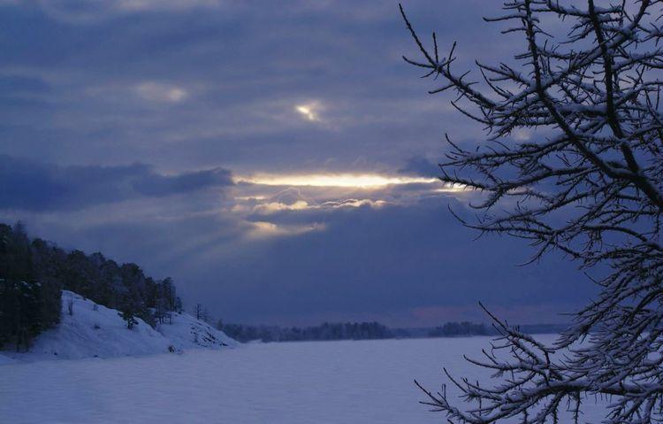 Snowscape Winterland Winterlandscapes