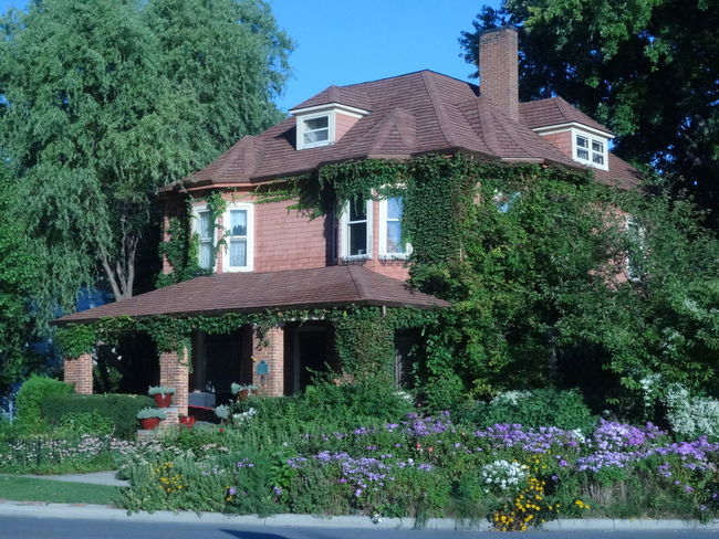 Ivy series... A beautiful home in Port Huron. Architecture Building Exterior Built Structure Residential Building Showcase September Eyemmasterclass Pure Michigan EyeEm Best Shots No Edit No Filter Unedited The Purist Ivy Covered Wall