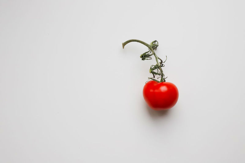 Close-up of tomatoes against white background