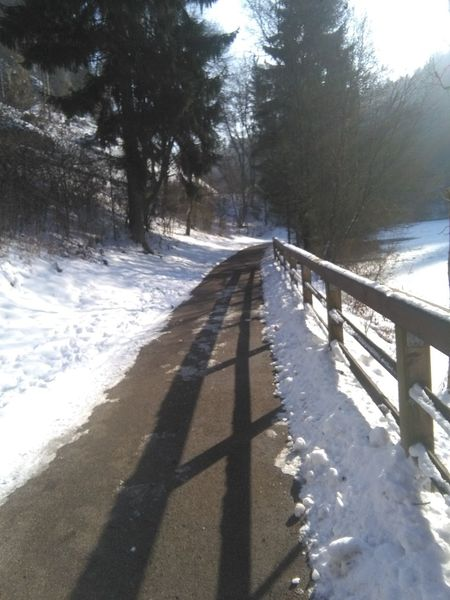 Nature Shadow Beauty In Nature Outdoors Day Snow The Way Forward No People Cold Temperature Winter Germany EyeEm Best Shots - Nature Winter Wonderland❄ Check This Out Hello World EyeEm Nature Lover Beauty In Nature