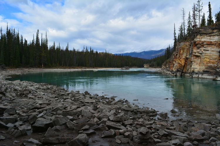 Jasper National Park Jasper Icefields Parkway Athabasca Falls Athabasca River Canada British Columbia Alberta Water Tree Sky Cloud - Sky Beauty In Nature Tranquil Scene Scenics - Nature Nature Plant No People Rock Lake Non-urban Scene Day Mountain Rock - Object Outdoors