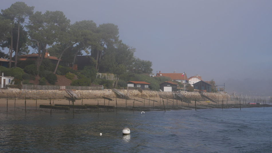 Bassin D'Arcachon Water Nature Tree Outdoors No People Ostréiculture Huitres Waterfront House Sea Arcachon Sky Built Structure Architecture Building Exterior Village Nature Photography Beauty In Nature Foggy Fog Foggy Day The Purist (no Edit, No Filter) No Filter Tranquil Scene