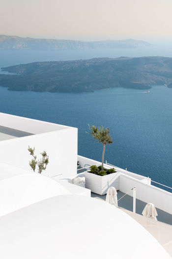 White architectural details with olive tree and  view of the aegean sea at oia in santorini greece