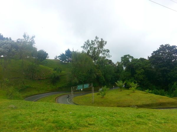 Colombia Es Bella Things That Are Green On The Road