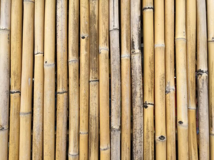 Bamboo Indoor Photography Interior Hardwood ASIA Natural Natural Pattern Brown Background Bamboo Forest Abstract Wood Bamboo Wallpaper Bamboo Wall Bamboo Wall Foreground Texture Bamboo Brown Bamboo Bamboo Background Photos By Lamut Background Bamboo Bamboo EyeEm Selects Full Frame Pattern Close-up Wall - Building Feature Day Metal