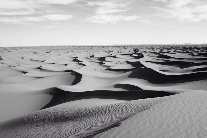 Blackandwhite Desert Waves Calm