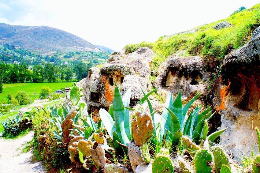 🌿💖🔳 Ancient cementery Ventanillas De Otuzco Cajamarca-Perú Landscape Mountain Scenics Nature Geology Beauty In Nature Travel Destinations Plant Green Color Outdoors EyeEm Gallery Laviniafenton EyeEmNewHere
