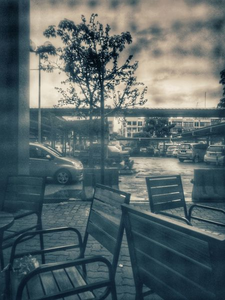 Window Weather Tree Indoors  Day Sky City Drink Table Starbucks Coffee Starbucks Starbucks ❤ Starbucks! Starbucks <3 Starbuckscoffee Food Food And Drink Huawei P9 Plus Huaweimobile Huawei P9 Photos Huaweiphotography HuaweiP9Photography Huawei Photography Huawei P9 Leica Youyida
