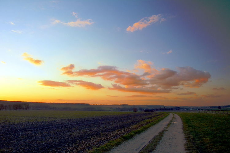 Sky Sunset Landscape Cloud - Sky Environment Field Scenics - Nature Land Tranquil Scene Tranquility The Way Forward Nature Beauty In Nature Direction Agriculture No People Road Rural Scene Plant Horizon Over Land Outdoors Diminishing Perspective
