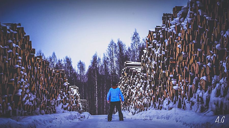 The woodman. Wood Outlander Canon Company Photographer Winter Snow Cold Temperature Rear View Walking Full Length Day Outdoors Nature One Person Tree Warm Clothing
