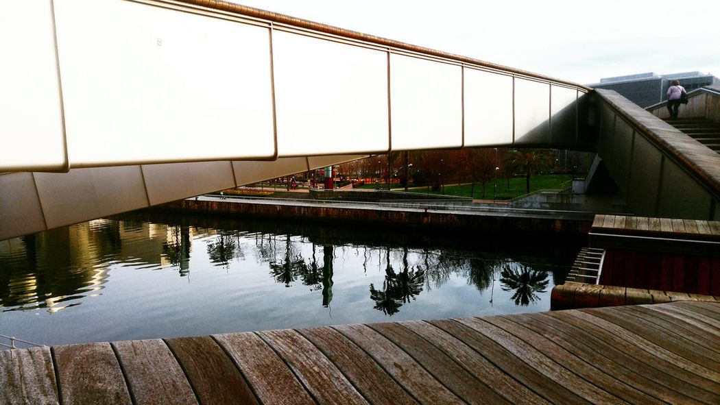 Bridge - Man Made Structure Reflection Water City Architecture Connection Outdoors SPAIN River Deusto University Of Deusto Riverside Bilbao City Palm Tree Springtime Outdoor Spring The Architect - 2017 EyeEm Awards BYOPaper!
