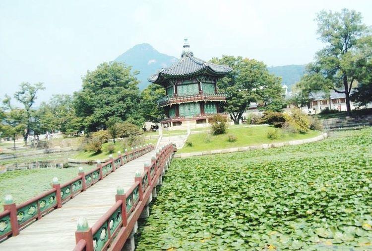 Gyeongbokgung palace Memory With You