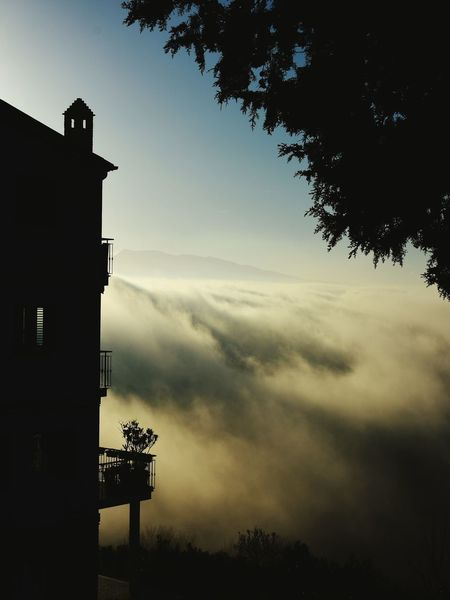 Fog Sunset Hills Italy #Winter Home Tree Outdoors No People Cloud - Sky Day Nature