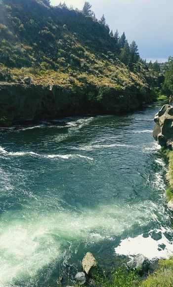 Oregon Water River SteelheadFalls Nature 43 Golden Moments