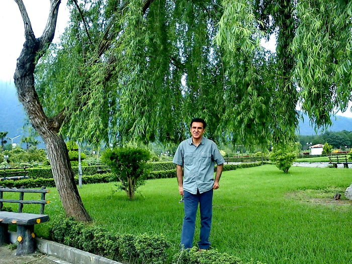 Mature man standing by tree on grassy field at park