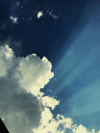 Cloud - Sky Sky Low Angle View Nature Beauty In Nature Tranquility Tranquil Scene Outdoors Sunlight Cloudscape Day Blue
