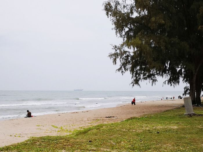 Terbentang luas Laut Memancing Tenang Tree Water Sea Beach Wave Sand Water's Edge Sand Dune