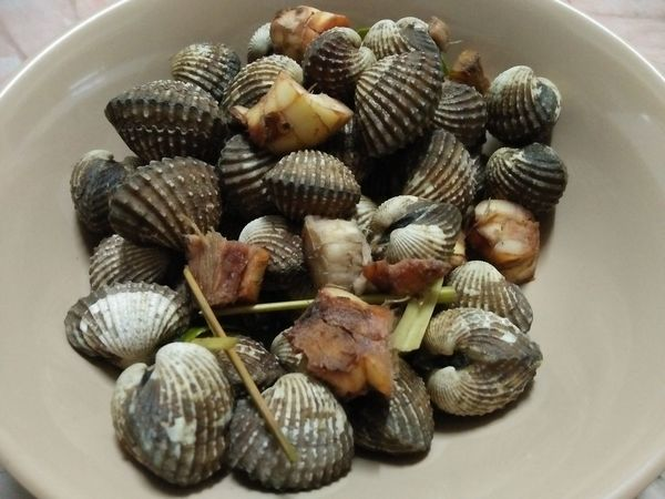 Healthy Eating Seashell Food And Drink Food No People Freshness Cooked Indoors  Close-up Day Nature Cockle Cockleshell Scald Skald SEAFOOD🐡 Seafood Asainfood Thailand🇹🇭