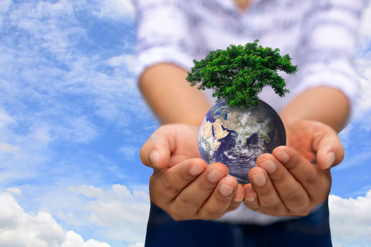 Digital composite image of person holding globe with tree against sky