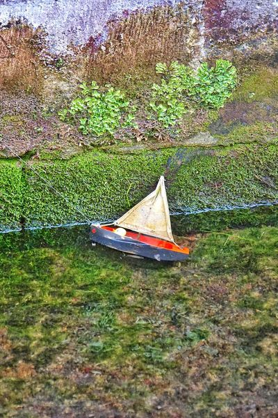 Grass Day Outdoors Nature Green Color Water Growth No People Lake Plant Nautical Vessel Toy Boat Toy Boat Toy Boat On Pond.
