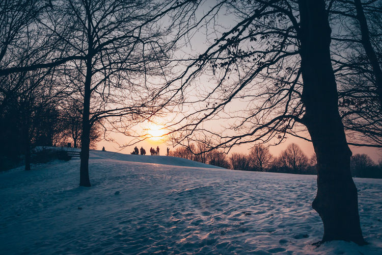 Bare trees on snow covered landscape against sky during sunset