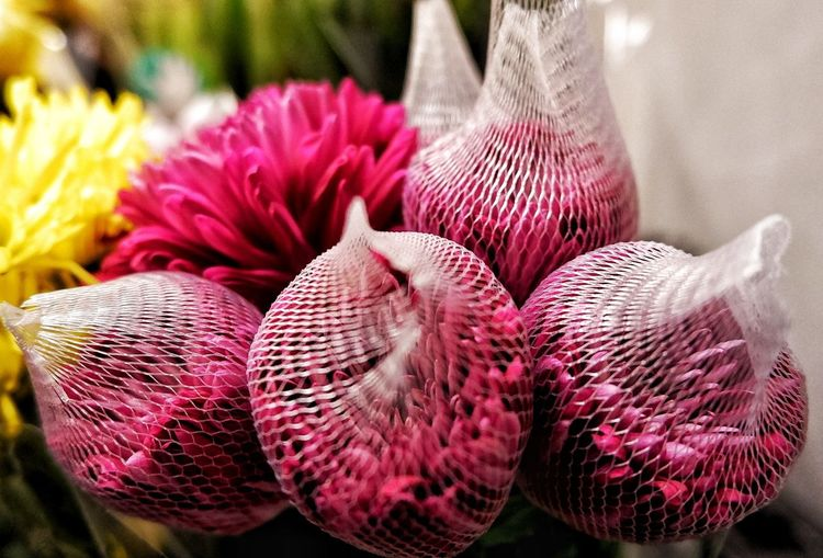 Flower protection Chrysanthemum Flower Flower Protection Protected Flowers Net On Flowers Flowers In Plastic Net Flower In The Store Selling Flowers Bouquet Of Flowers Red Flowers Hidden Flowers Flower Flower Head Close-up Plant Blooming In Bloom Petal Fragility Blossom Dahlia Botany Bud Plant Life