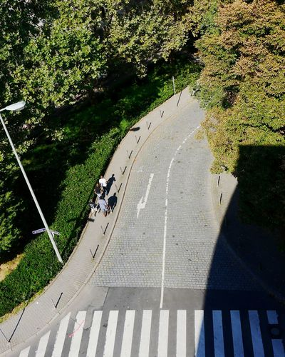 High angle view of people walking on sidewalk