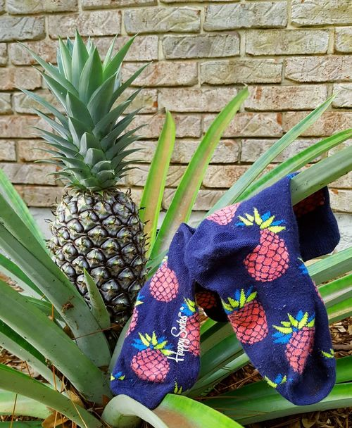 Pineapple Ananas Socks Pupparazzi No People Happysocks Happysocksofficial Happy Socks Socken Fresh Fruit Healthy Healthy Food Garden Sommergefühle Let's Go. Together. Mix Yourself A Good Time