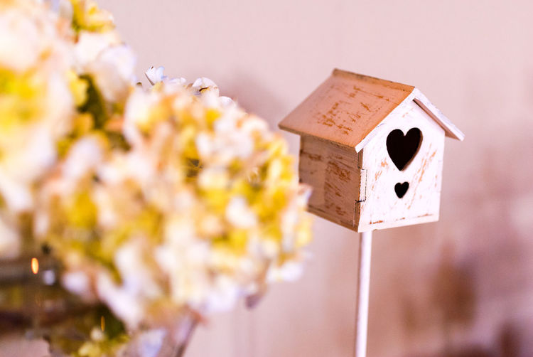 Close-up of birdhouse on wooden wall