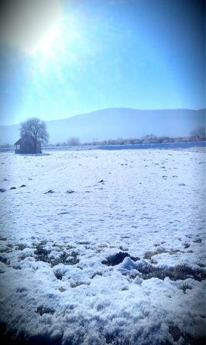 zimska idila, priroda, Cold Temperature Winter Snow Ice Frozen Landscape Nature Beauty In Nature
