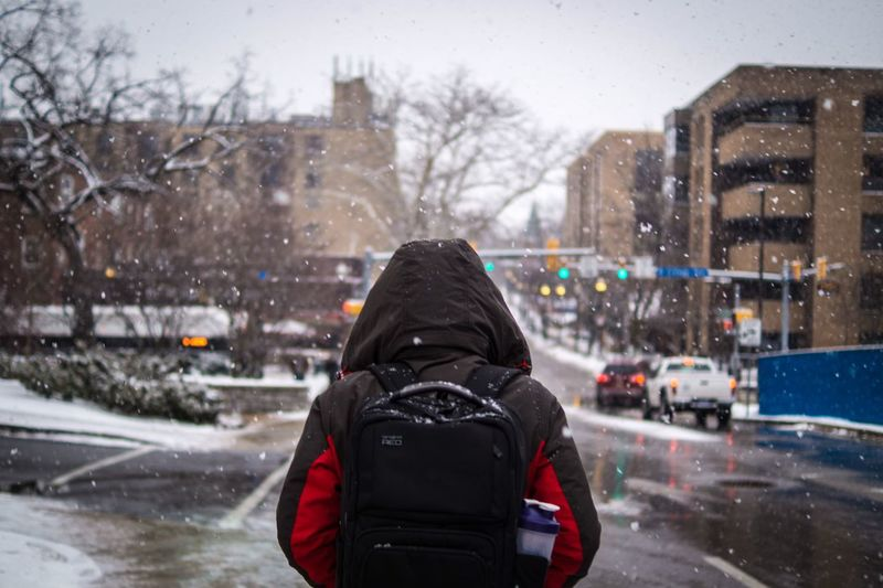 Walking Snow Weather Cold College Backpack Student Rear View Weather Winter Cold Temperature Real People Focus On Foreground Snow One Person Day Warm Clothing Snowing Road Outdoors Nature Architecture