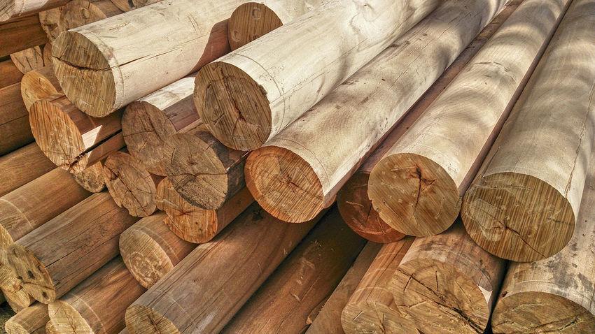 Bauholz Baumstämme Bearbeitet Beams Bearbeitet Close Holz Holzhandel Holzlager Lang Log Pile Logs No Bark Ohne Rinde PLAKATiv Rund Sunny☀ Timber Yard Wide Angle