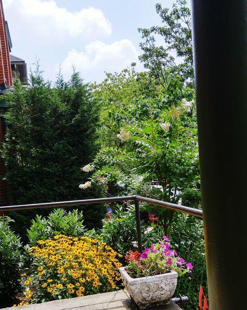 LouisvilleKentucky Lunchbreak Louisvillehighlands Nature On Your Doorstep