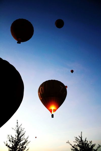 Hot Air Ballons in the Morning Sky EyeEm Selects Digital Photography Photooftheday Awesome Colors Taking Off Adventure Early Mornings Hot Air Balloons Hot Air Balloon Mid-air Flying Air Vehicle Transportation Flame Sky Multi Colored Ballooning Festival Balloon Outdoors No People Clear Sky