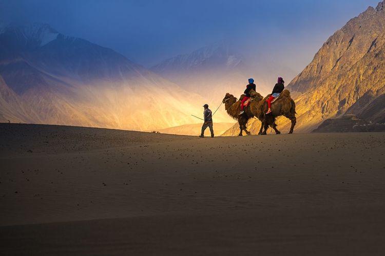 People riding in desert